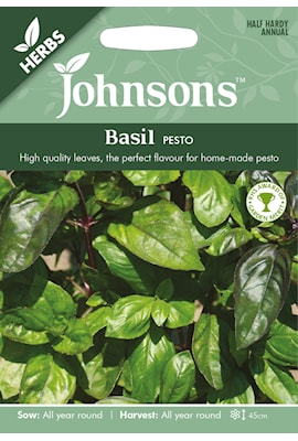 basilika-pesto-1