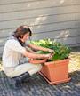 green-basics-garden-xxl-saucer-80cm-living-bl-3