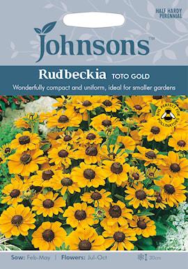 sommarrudbeckia-toto-gold-1