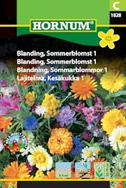 blandning-sommarblommor-1-1