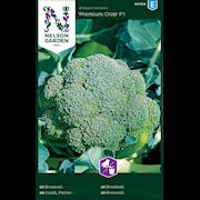 broccoli-premium-crop-f1-1