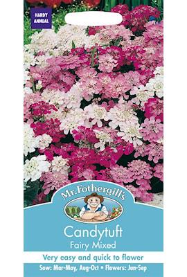roseniberis-fairy-mixed-1