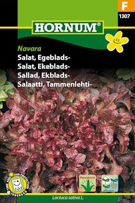sallad-ekblads--navara-1