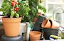 green-basics-growpot-dia-24-cm-living-black-2