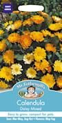 ringblomma-daisy-mixed-1