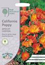 smntuta-california-apricot-chiffon-1