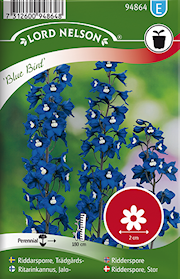 riddarsporre-trdgrds--blue-bird-1