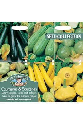 squash-och-zucchini-collection-6-sorter-1