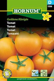tomat-goldene-knigin-1