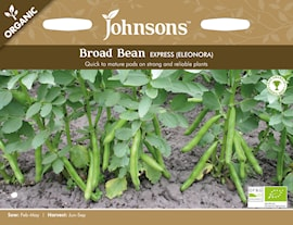 bondbna-express-eleonora-organic-1