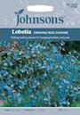 hnglobelia-blue-cascade-1