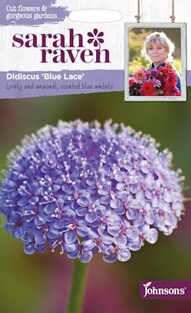 blparasoll-blue-lace-1
