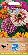 zinnia-whirlygig-mix-1