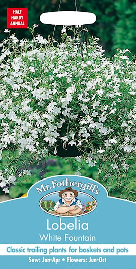 lobelia-white-fountain-1