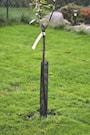gnagskydd-58-cm-svart-1