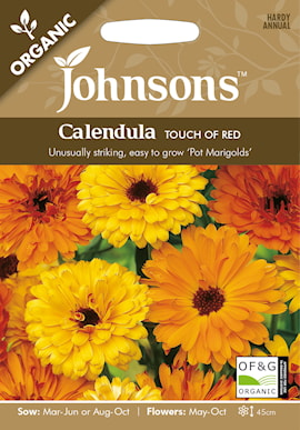 ringblomma-torch-of-red-organic-1