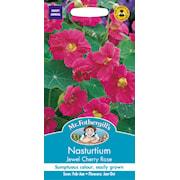indiankrasse-jewel-cherry-rose-1