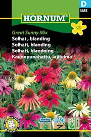solhatt-blandning-great-sunny-mix-1