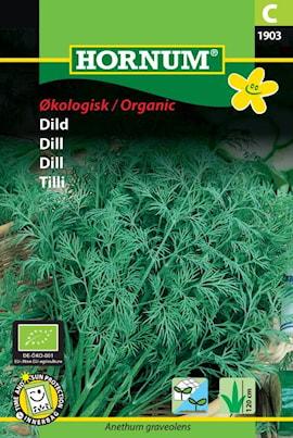 dill-organic-1