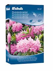 rhododendrongdsel-08-kg-1