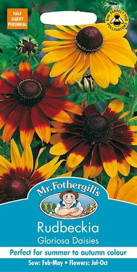sommarrudbeckia-gloriosa-daisies-1