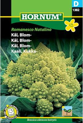 blomkl-romanesco-natalino-1