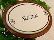 salvia-skylt-i-emalj-p-spjut-1