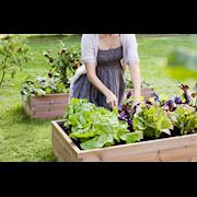 hasselfors-garden-odlingsbnk-120x80cm-1