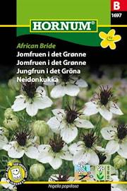 jungfrun-i-det-grna-african-bride-1
