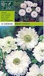 anemon-mount-everest-3
