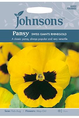 pens-swiss-giants-rhinegold-1