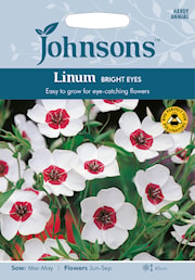 blomsterlin-bright-eyes-1