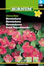blomsterkrasse-cherry-rose-1