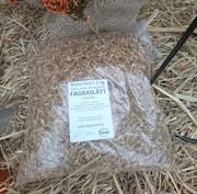 nakenkorn-ekologisk-1kg-1