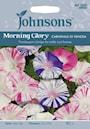 blomman-fr-dagen---morning-glory-carnevale-di-1