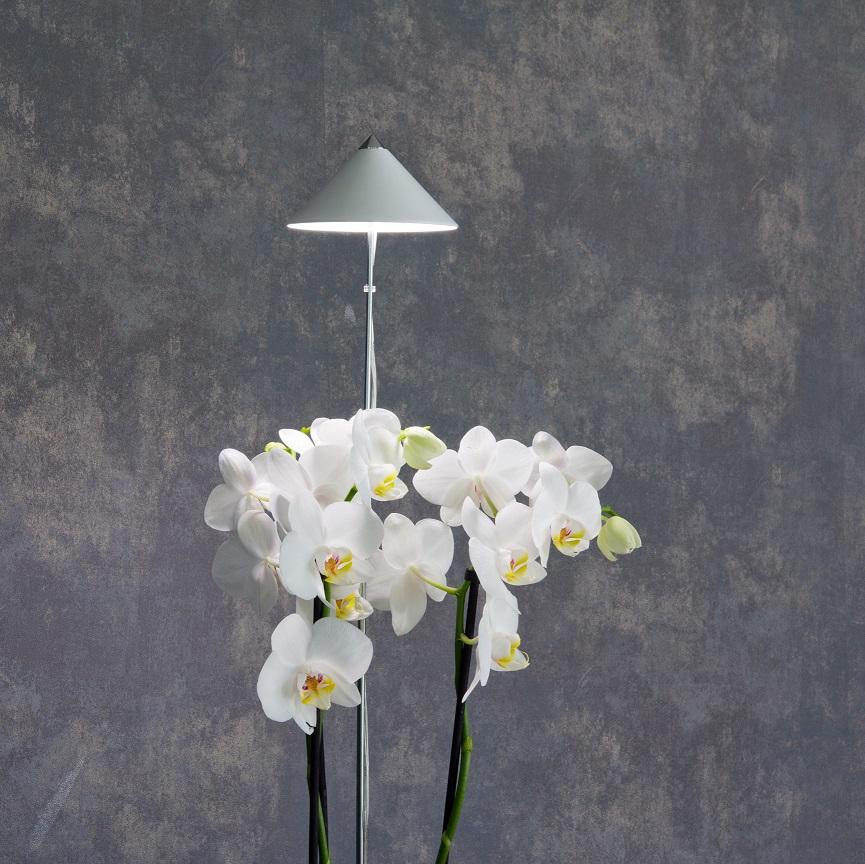 Sunlite 'Orchid' växtlampa, Vit 10W, teleskopstativ