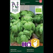 basilika-emily-grn-organic-1