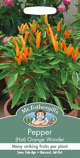 chili-orange-wonder-1