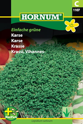 krasse-einfache-grune-maxipack-1