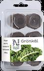 hydroponisk-easy-to-grow-grnkl-1