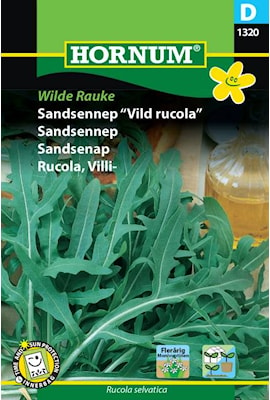 sandsenapvild-rucola-wilde-rauke-1