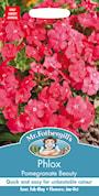 sommarflox-pomegranate-beauty-1