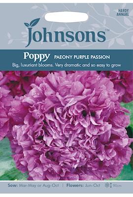 pionvallmo-purple-passion-1