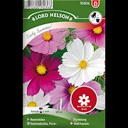 rosenskra-early-summer-bl-frger-1