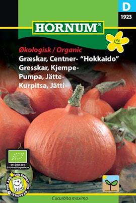 pumpa-jtte--uchiki-kuri-organic-1