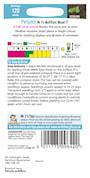petunia-mr-fs-multiflora-mixed-f1-2