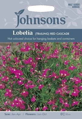 lobelia-red-cascade-1