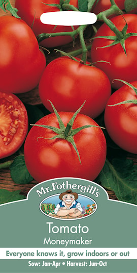 vxthus--tomat-moneymaker-1