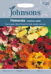 nemesia-carnival-mixed-1