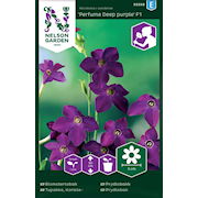blomstertobak-perfume-deep-purple-f1-1